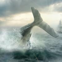 Moby Dick Mod Apk