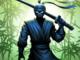 Ninja warrior Apk Mod gemas infinita