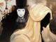 MazM The Phantom of the Opera Apk Mod gemas infinita